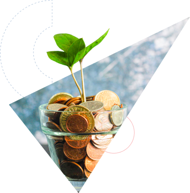 Image of plant in a bows with coins
